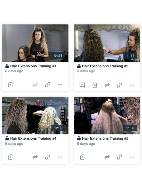 Hair Extensions Video Training